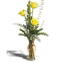 3 Yellow Roses