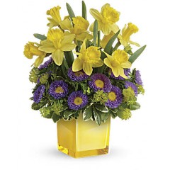 Playful Spring Daffodil Bouquet