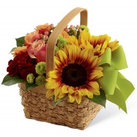 Bright Day Basket Bouquet