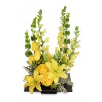 Yolo Yellow Bouquet