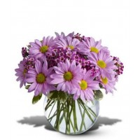 Delightfully Daisy Bouquet