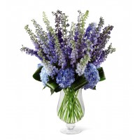 Honestly Delphinium and Hydrangea Bouquet