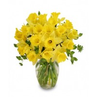 Dancing Daffodils Bouquet