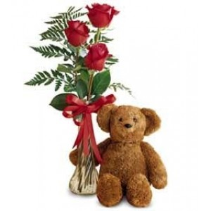 3 Red Roses and Plush Bear