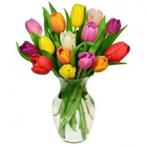 Swept Away Rainbow Tulip Bouquet - 15 Stems