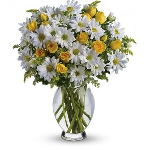 Amazing Daisy Bouquet