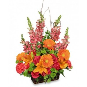 Brilliant Blooms Basket Bouquet