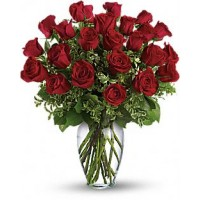 Radiant Devotion - Two Dozen Red Roses Bouquet